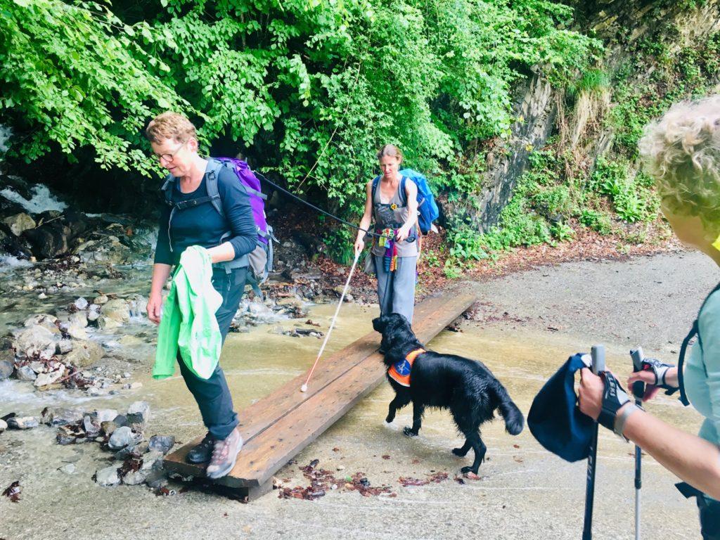 Über einen kleinen Flusslauf führt ein Steg, diesen überquert eine Pilgerin mit Langstock. Ihr Blindenführhund schaut gewissenhaft zu ihr auf.