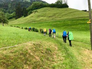 Auf einem schmalen Wiesenweg geht die PIlgergruppe hintereinander.