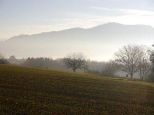 Auf diesem Foto sieht man im Vordergrund einen Acker mit vereinzelt Gras darauf wachsend. Im Hintergrund zieht sich mittig über das ganze Foto eine Baumreihe. Dahinter, in der Ferne sieht man die einen Berg, der aus einem Nebelschleier hervorgeht.