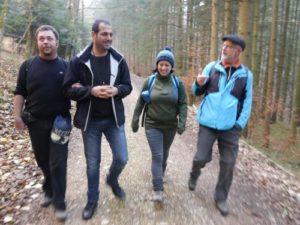 Eine Gruppe Wanderer bestehend aus vier Personen wandert im Wald und sie unterhalten sich dabei.