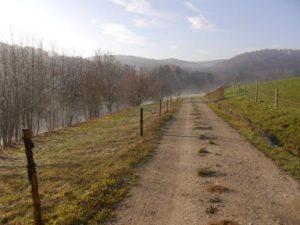 Auf diesem Foto sieht man einen geschotterten Feldweg der rechts bis mittig auf dem Foto in Blickrichtung nach vorne verläuft. Links sind in größerem Abstand Zaunpfosten zu erkennen und dahinter, abgrenzend zu einer Wiese stehen Bäume in einer Reihe. Im Hintergrund sieht man den Albtrauf.