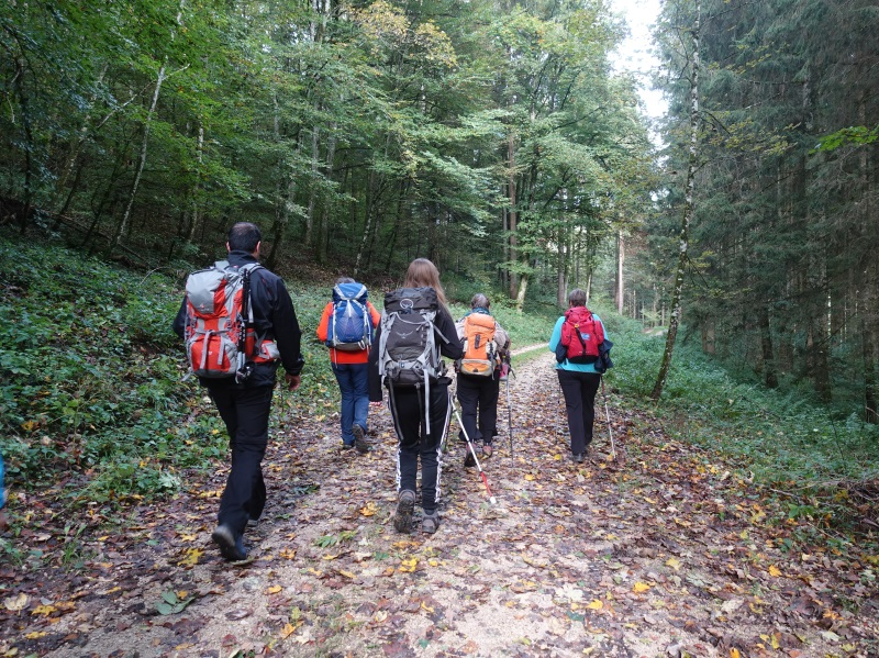 Die Wandergruppe geht durch Herbstlaub