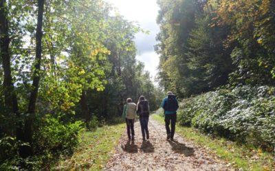Herbstwandertour 2019 – auf den Spuren der Albschäfer