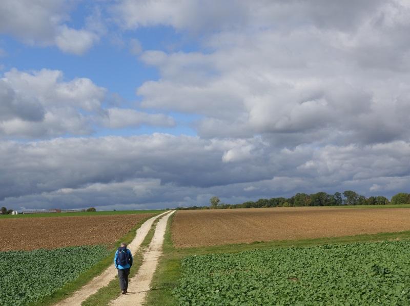 Ein Wanderer auf einem Weg in die Weite unter blauem Himmel.