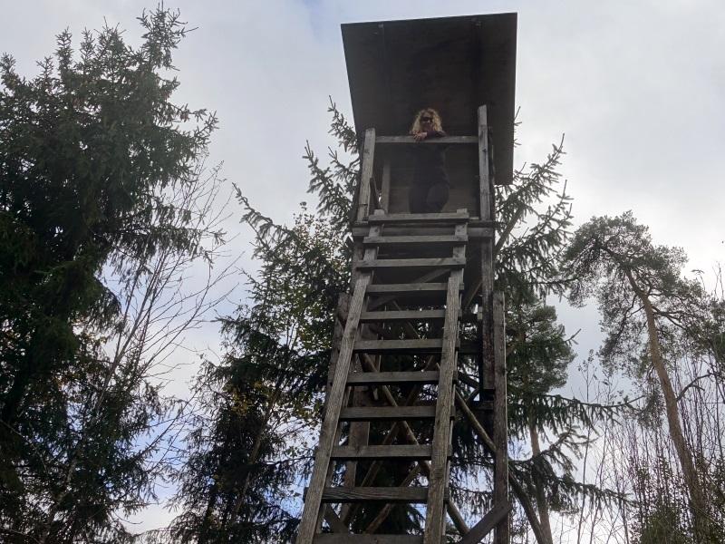 Eine Wanderin auf einem sehr hohen Hochsitz aus Holz