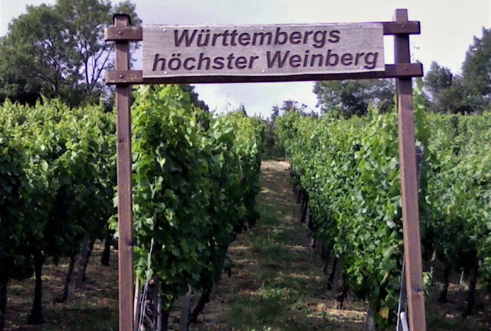 15.11.2020 | Novemberwanderung mit Weinprobe