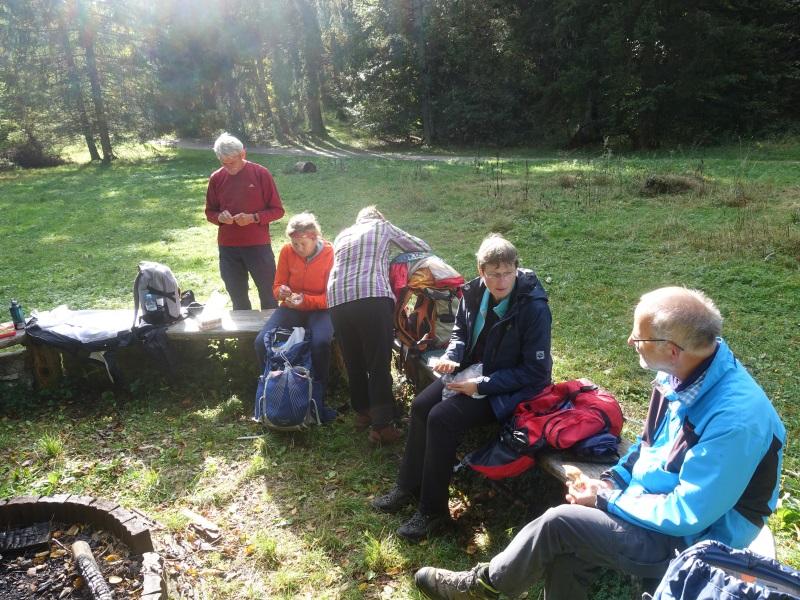 Unsere Wandergruppe bei einem gemütlichen Päuschen auf Baumstämmen sitzend
