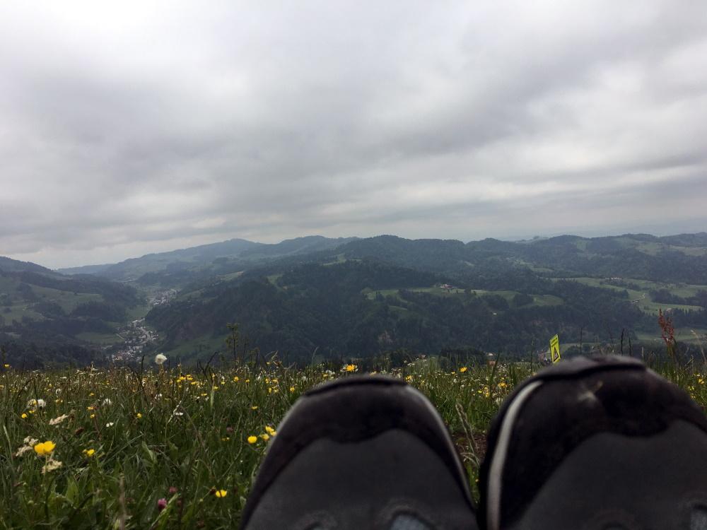 Blümchenwiese und Wanderschuhe im Vordergrund, dahinter weite Berge.