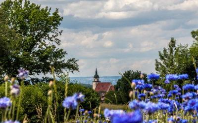23.08.2020 | Sommerwanderung: Weilheim unter Teck